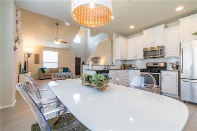 Buda Single Family Home For Sale: 195 Painted Desert Ln
