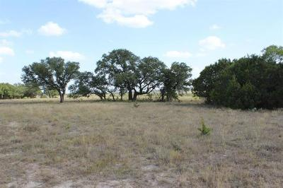 Bell County, Burnet County, Coryell County, Lampasas County, Llano County, McLennan County, Mills County, San Saba County, Williamson County Farm For Sale: 6903-7 Cr 2001- Tract 7