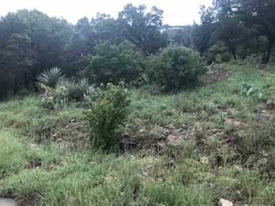 Horseshoe Bay Residential Lots & Land For Sale: 711 Fawn