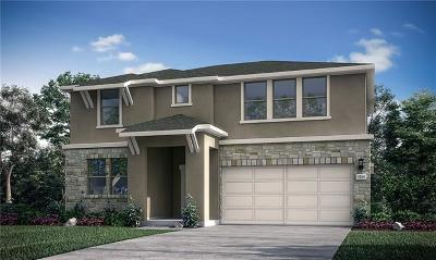 Round Rock Single Family Home For Sale: 5900 Agostino Drive