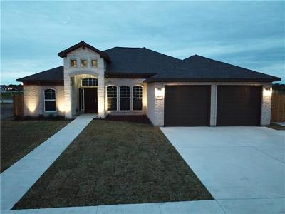 Single Family Home For Sale: 107 Andrea Ct