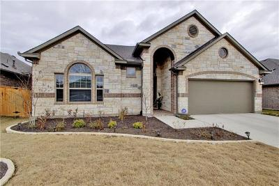 Pflugerville Single Family Home For Sale: 19913 Abigail Way