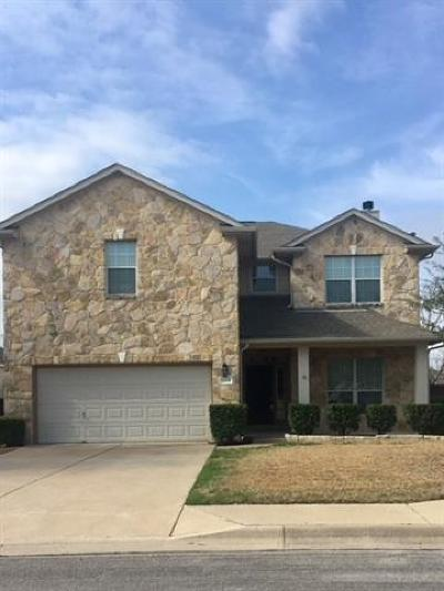 Georgetown Single Family Home For Sale: 30131 Drifting Meadow Dr