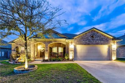 Hays County, Travis County, Williamson County Single Family Home For Sale: 133 Rock Vista Run