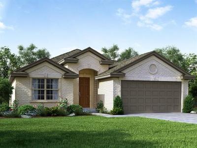 Kyle Single Family Home For Sale: 130 Sunshine Ln