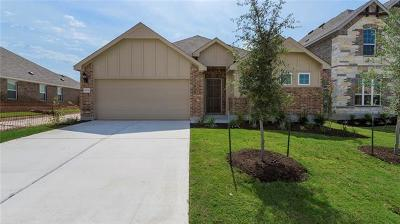 Pflugerville Single Family Home For Sale: 17237 Borromeo Ave
