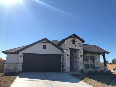 Single Family Home For Sale: 13700 Larrys Ln