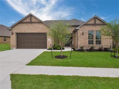 Round Rock Single Family Home For Sale: 4849 Fiore Trl