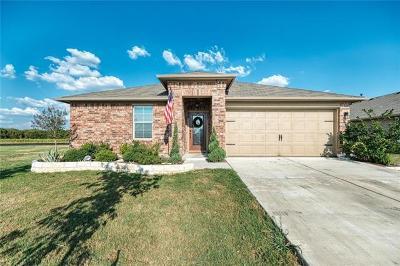 Hutto Single Family Home For Sale: 531 Luna Vista Dr