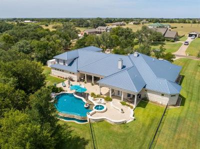 Belton Single Family Home For Sale: 4074 Tribute Lane Dr