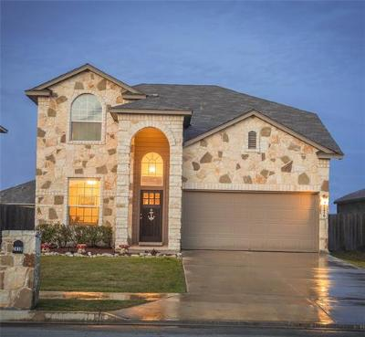 New Braunfels Single Family Home For Sale: 2419 Chad St