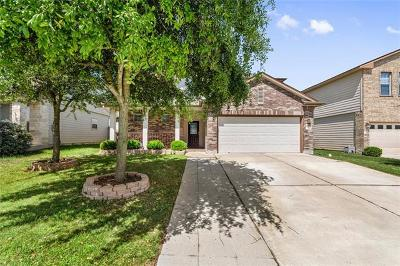 Hutto TX Single Family Home For Sale: $275,000