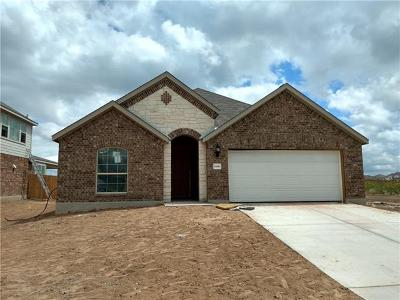 Pflugerville Single Family Home For Sale: 5300 Anaheim Ave