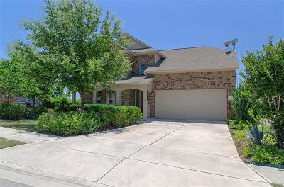 New Braunfels Single Family Home For Sale: 305 Posey Pass