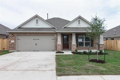 Round Rock Single Family Home For Sale: 3304 Lauren Nicole Ln