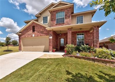 Buda Single Family Home For Sale: 252 Pond View Pass