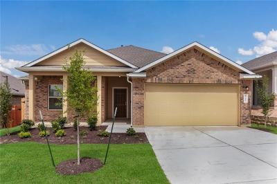 Del Valle Single Family Home For Sale: 15404 Summer Ray Dr