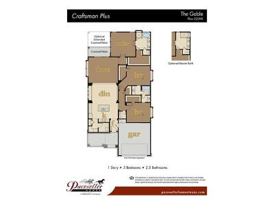 Single Family Home For Sale: 162 Mount Ellen St