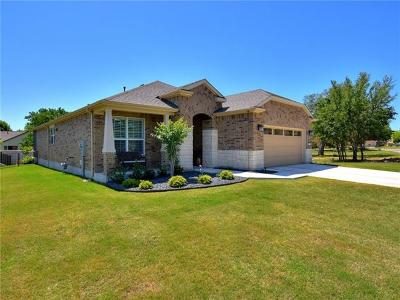 Sun City Single Family Home For Sale: 202 Bluestem Dr