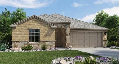 Hays County, Travis County, Williamson County Single Family Home For Sale: 7325 Spring Ray Drive