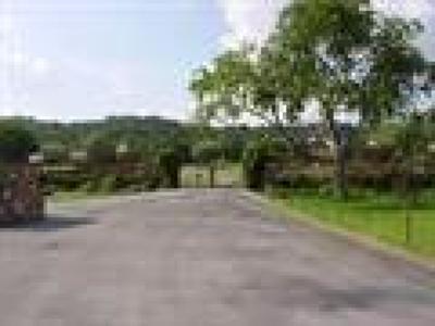 Burnet TX Farm For Sale: $99,950