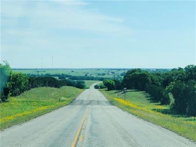 Bell County, Burnet County, Coryell County, Lampasas County, Mills County, Williamson County, San Saba County, Llano County Farm For Sale: TRACT 4 E Fm 580