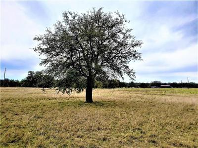 Georgetown TX Residential Lots & Land For Sale: $219,199