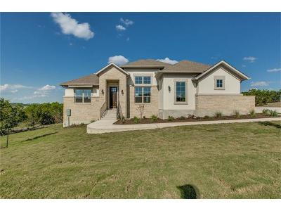 Dripping Springs Single Family Home For Sale: 17100 Avion Dr