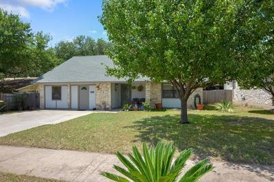 Travis County Single Family Home For Sale: 12800 Lamppost Ln