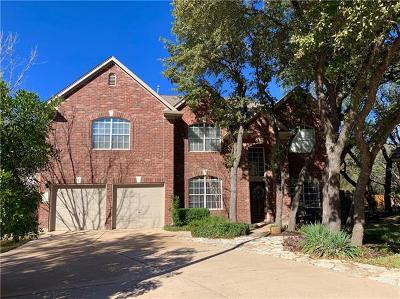 Austin Single Family Home For Sale: 410 Warm Mist Cv