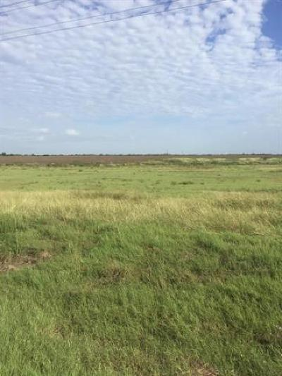 Granger TX Farm For Sale: $135,000