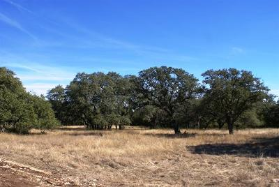 Dripping Springs Residential Lots & Land For Sale: Redemption Ave Lot 28