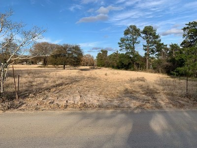 Bastrop County Residential Lots & Land For Sale: 003 Sand Hills Rd