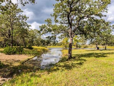 Manor Single Family Home Pending - Taking Backups: 270 Dry Creek Rd