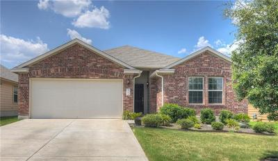 Kyle Single Family Home For Sale: 136 Beargrass Dr