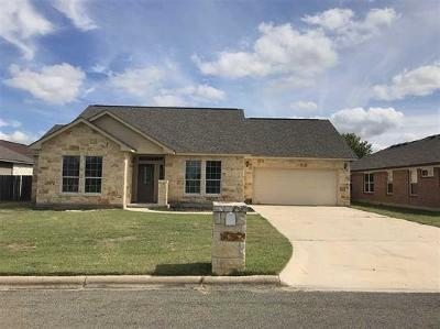 Burnet County Single Family Home For Sale: 141 Marion St