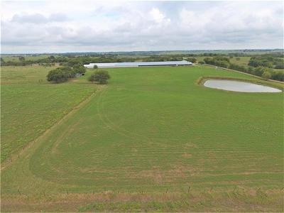 Schulenburg TX Farm For Sale: $476,338