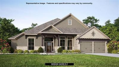 Austin Single Family Home For Sale: 18508 McGloin Trl