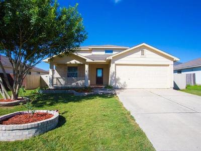 Kyle Single Family Home For Sale: 257 Enterprise