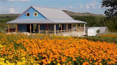 Blanco Farm For Sale: 13977 Ranch Road 2325
