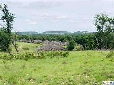 Bell County, Burnet County, Coryell County, Lampasas County, Mills County, Williamson County, San Saba County, Llano County Farm For Sale: TRACT 3 E Fm 580
