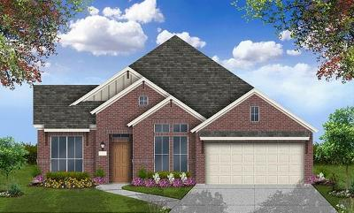 Round Rock Single Family Home For Sale: 3136 Pablo Way