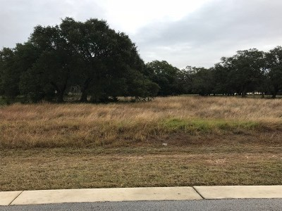 Hays County Residential Lots & Land For Sale: 292 Jenn Cv