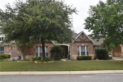 Austin Single Family Home Pending - Taking Backups: 248 Desert Willow Way