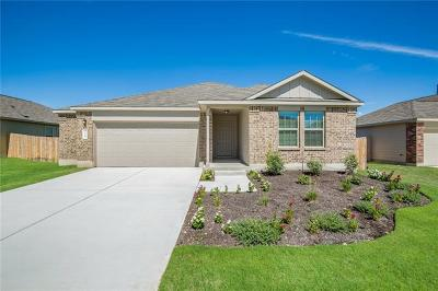 Kyle Single Family Home For Sale: 224 Mineral Springs Dr