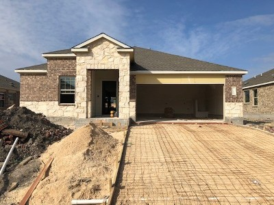 Pflugerville Single Family Home For Sale: 21604 Windmill Ranch Ave