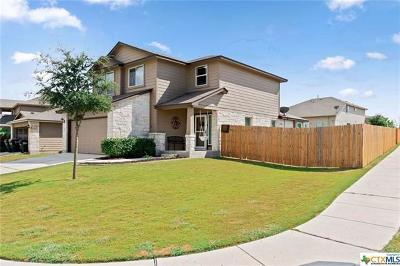 San Marcos Single Family Home For Sale: 317 Brazoria Trl