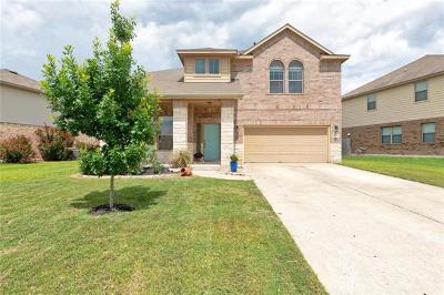 Pflugerville Single Family Home For Sale: 4600 Rolling Water Dr