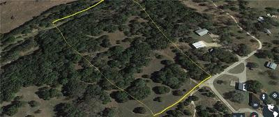 Liberty Hill Residential Lots & Land Pending - Taking Backups: 737 King Rea