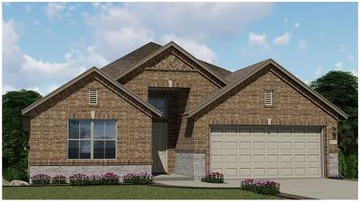 Hutto Single Family Home For Sale: 1009 Lauren Way